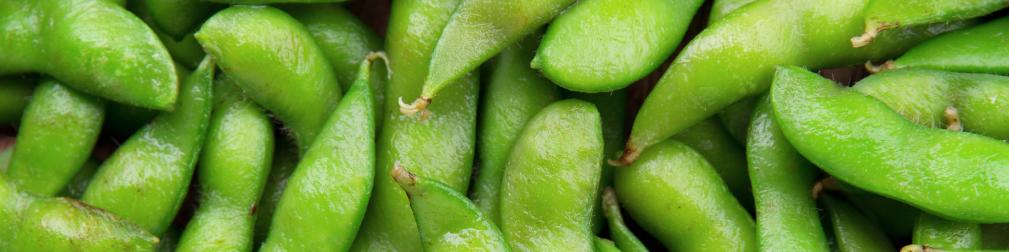 The Latest Research on Soy and Cancer