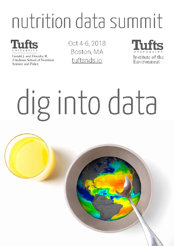 data summit flyer