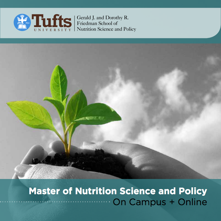 Masters Degree in Nutrition, Online + On Campus: Tufts University