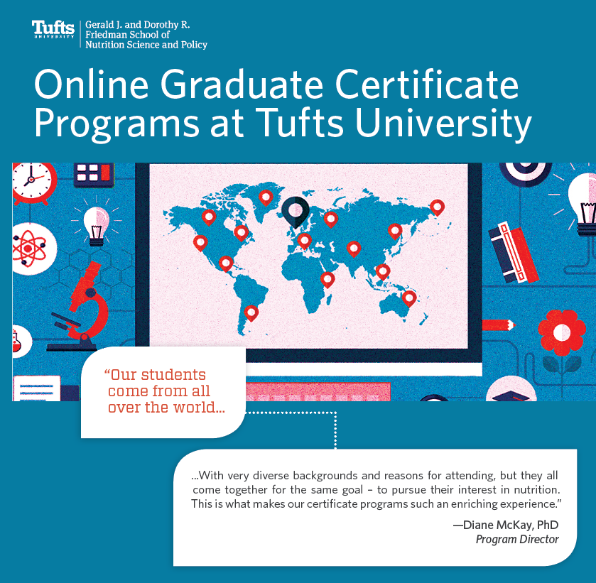 brochure cover- online graduate courses and certificate programs at tufts university