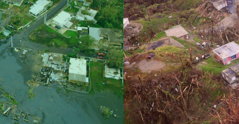Ag Crisis in Puerto Rico