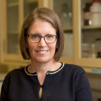 Kyla Shea, PhD