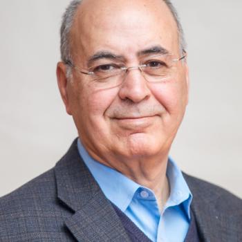 Mohsen Meydani